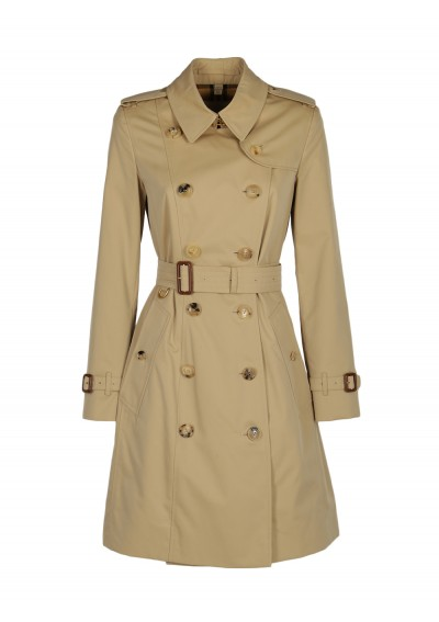 Chelsea Heritage Trench